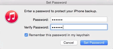 How to set iPhone backup encryption password